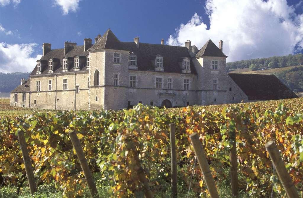 Château du Clos de Vougeot, Bourgogne. Inrap. © Château du Clos de Vougeot