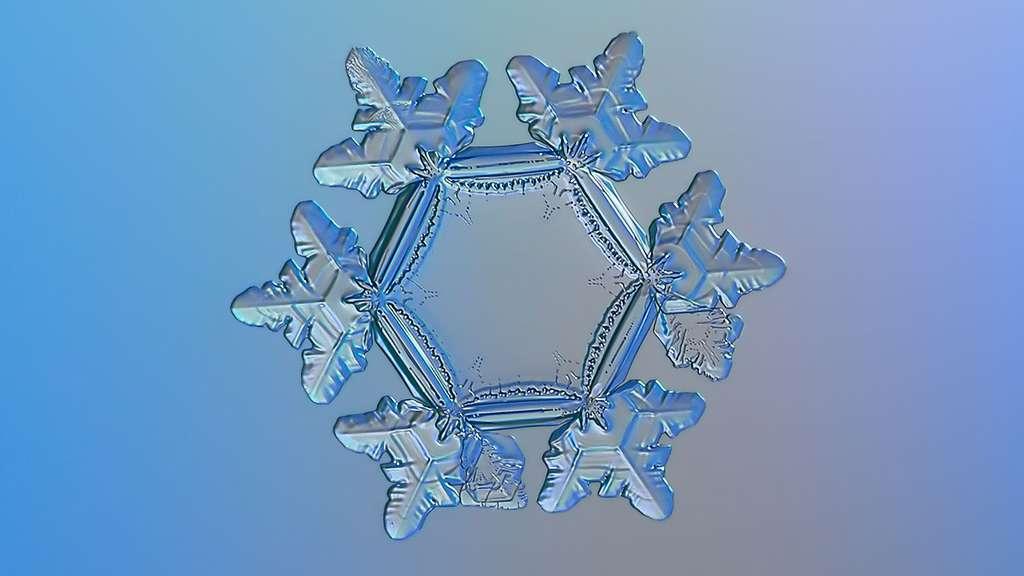 Un flocon de neige aux allures de tournesol