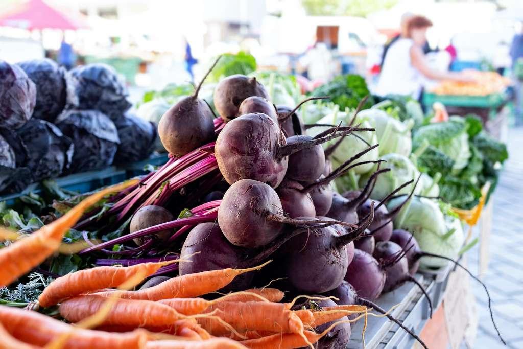 Février est la meilleure saison des légumes racine et des choux. © Moving Moment, Adobe Stock