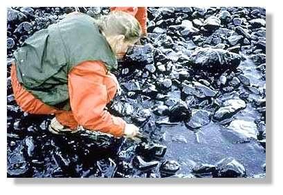© NOAA – Attention aux inhalations du fuel fraîchement déposé !
