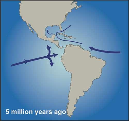 Amérique du Nord et Amérique du Sud ont convergé voici 5 millions d'années, durant le Pliocène, fermant petit à petit le Central American Seaway. La circulation des masses d'eau a alors été modifiée. Le Gulf Stream s'est notamment intensifié. La salinité des océans Pacifique et Atlantique a commencé à différer. © WHOI