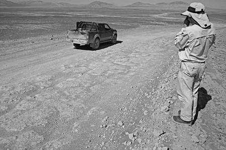 Des polygones de dessiciation dans un sol riche en sulfates dans le désert de l'Atacama au Chili. © Ronald Amundson, UC Berkeley
