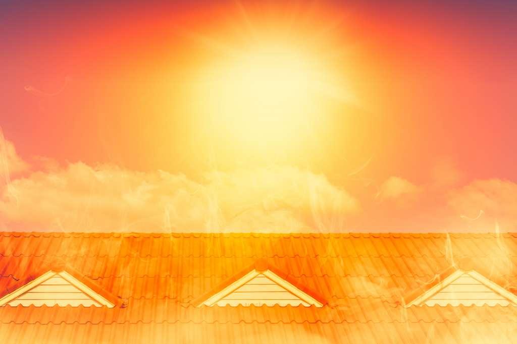 Le bois réfléchit le soleil et absorbe la chaleur du bâtiment pour la réémettre sous forme de lumière. © Korn V., Fotolia