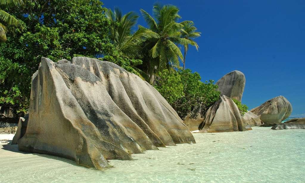 Paysage paradisiaque des Seychelles