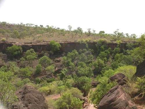 Les forêts naturelles originelles sont fragmentées et confinées aux seuls espaces inaccessibles ou inadéquates aux activités humaines (Mts Mandingues, Mali - 2002) © Photo Philippe Birnbaum - Tous droits de reproduction réservés