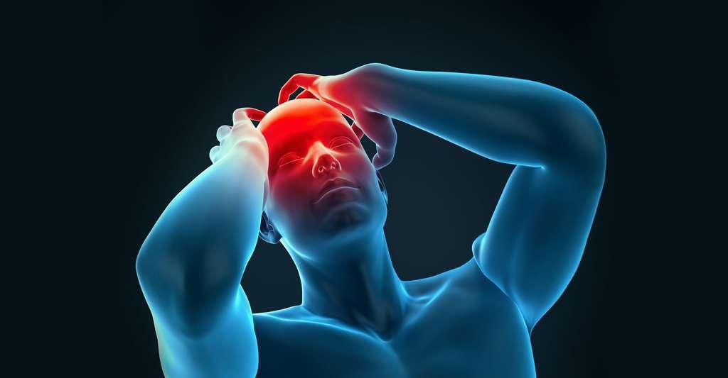 La maladie de Creutzfeldt-Jakob. © Sebastian Kaulitzki, Fotolia