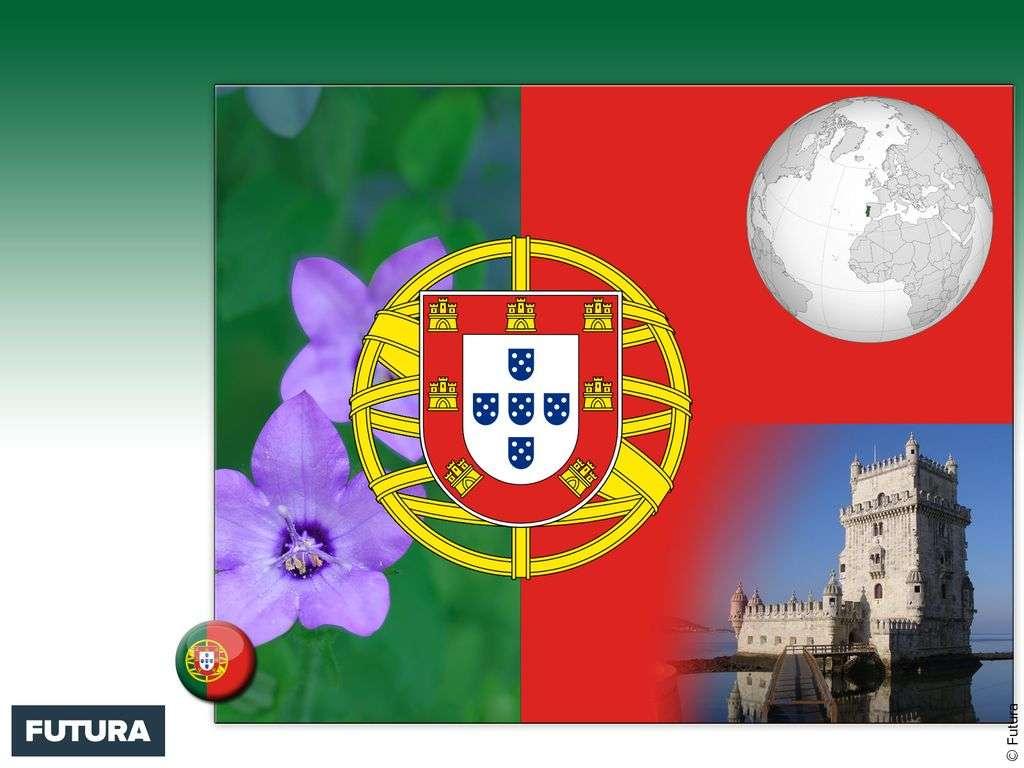 Drapeau : Portugal
