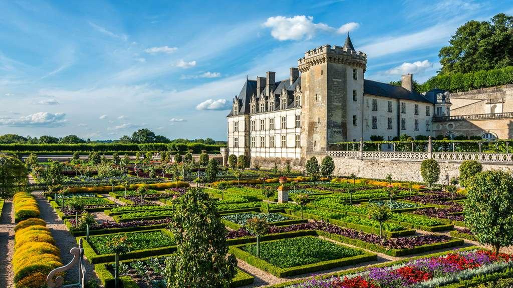 Le château de Villandry et sa mosaïque végétale