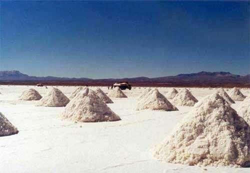 Lac salé - Altiplano - Bolivie