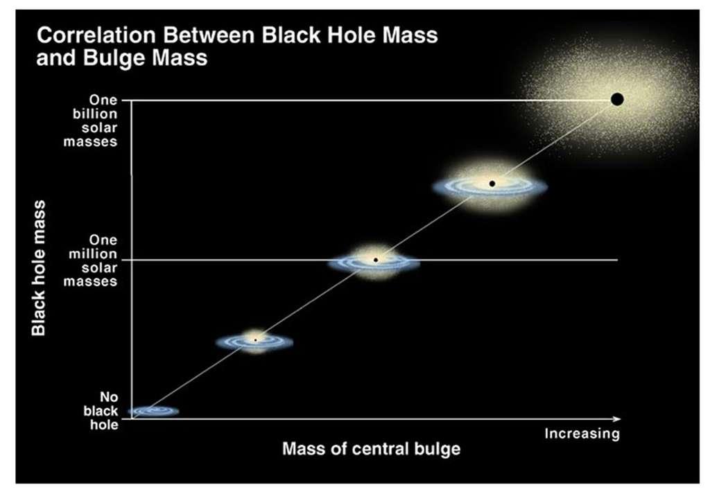 Graphique montrant la relation entre la masse du trou noir central et la masse du bulbe (ou sphéroïde stellaire) des galaxies. En gros, la masse du trou noir représente 0,3 % de la masse du bulbe. © K. Cordes, S. Brown (STScI)