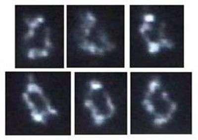 Première réplique synthétique du chromosome de Mycoplasma genitalium obtenue par les chercheurs du J. Craig Venter Institute. Crédit JCVI
