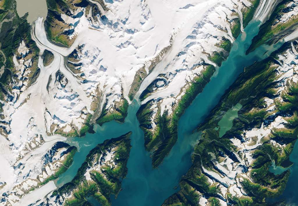 Image satellite de la région de Barry Arm et les glaciers qui y descendent, le 13 septembre 2013. © Nasa