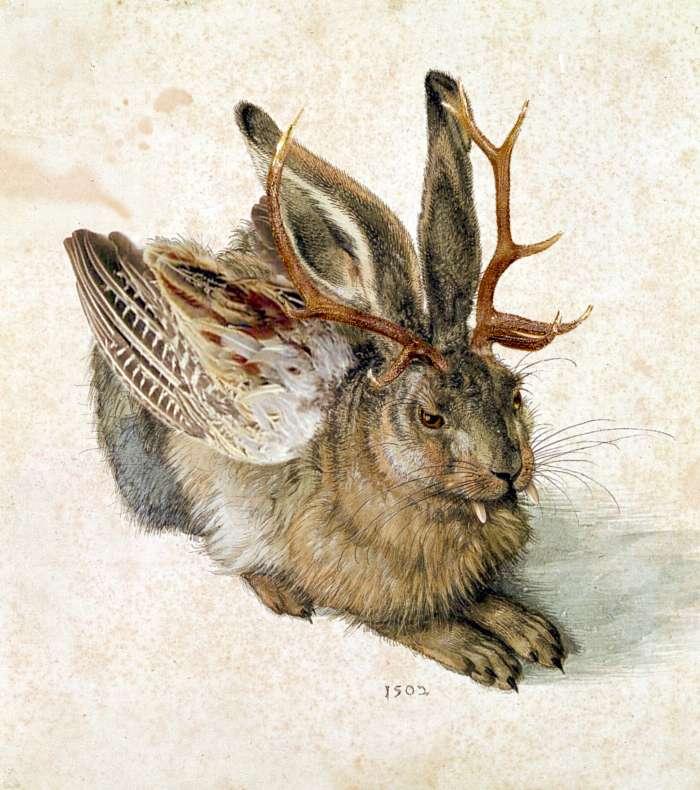 Détournement de l'aquarelle Le Lièvre (Albrecht Dürer), représentant l'une des apparences que peut prendre le wolpertinger. © Thomas Grunfeld