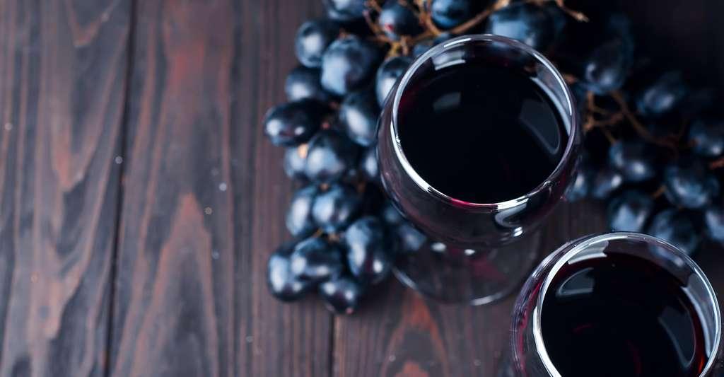 Comment transformer du raisin en vin ? © Yuliia Mazurkevych, Shutterstock