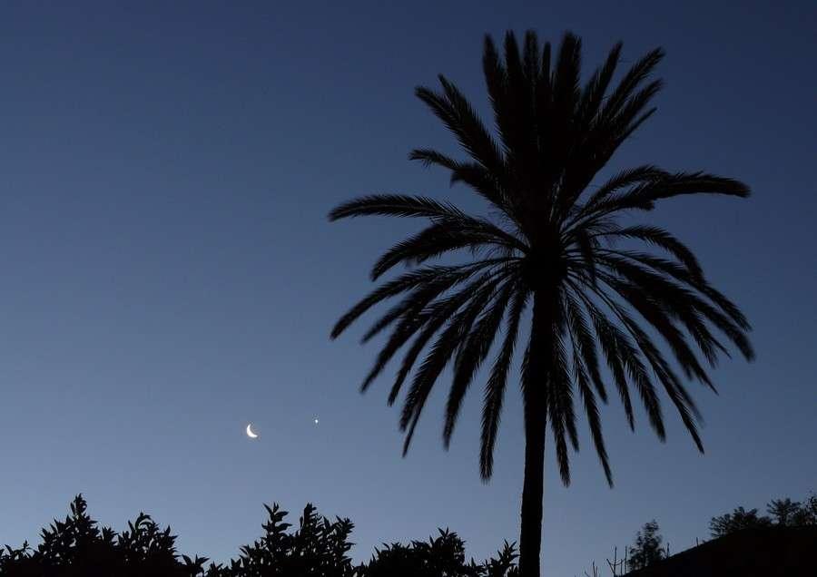 Le croissant lunaire et Vénus dans l'aube de Marrakech. © J.-B. Feldmann