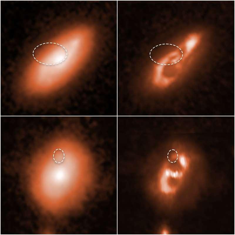 Les astronomes utilisant le télescope spatial Hubble ont localisé deux FRB dans les bras spiraux des deux galaxies ci-dessus. Les deux images à gauche montrent des clichés bruts de Hubble. Après un traitement numérique, les deux images améliorées sur la droite révèlent plus en détail la structure en spirale de chaque galaxie. Les noms de catalogue des sursauts radio sont FRB 190714 (en haut) et FRB 180924 (en bas). Les lignes ovales en pointillés dans chacune des quatre images indiquent l'emplacement des FRB. © Nasa, ESA, Alexandra Mannings (UC Santa Cruz), Wen-fai Fong (Northwestern). Traitement d'image : Alyssa Pagan (STScI)