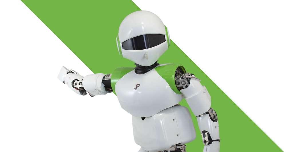 Pino, un exemple des premiers robots humanoïdes. © Symbiotic Systems Project
