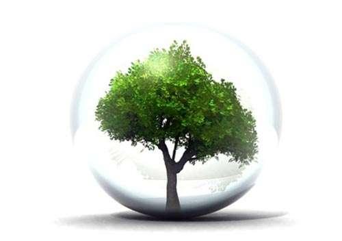 Protéger l'environnement des effets des OGM grâce aux directives européennes. © ecoden.fr