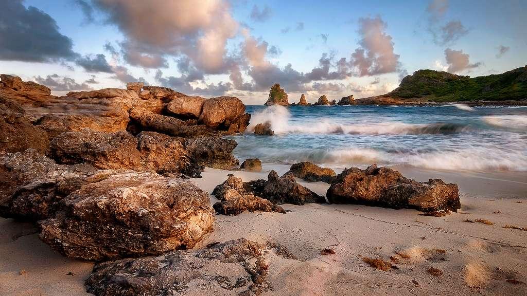 Parc national de la Guadeloupe : une biodiversité exceptionnelle