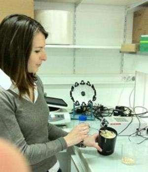 La pâte d'arachide subit un traitement particulier de la part des chercheurs de l'université de Toulouse avant de devenir hypoallergénique. La technique est brevetée. © Faculté de pharmacie de Toulouse