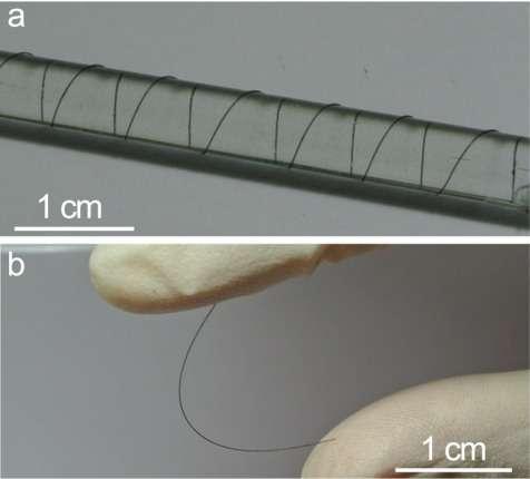 La fibre lumineuse développée par les chercheurs de l'université Fudan (Shanghai) et de l'UCLA (États-Unis) n'est épaisse que d'un millimètre et très souple. Elle peut s'éclairer sur toute sa surface, pour le moment en jaune ou en bleu. Les scientifiques assurent que d'autres couleurs sont envisageables. © Zhitao Zhang, Fudan University, Nature Photonics