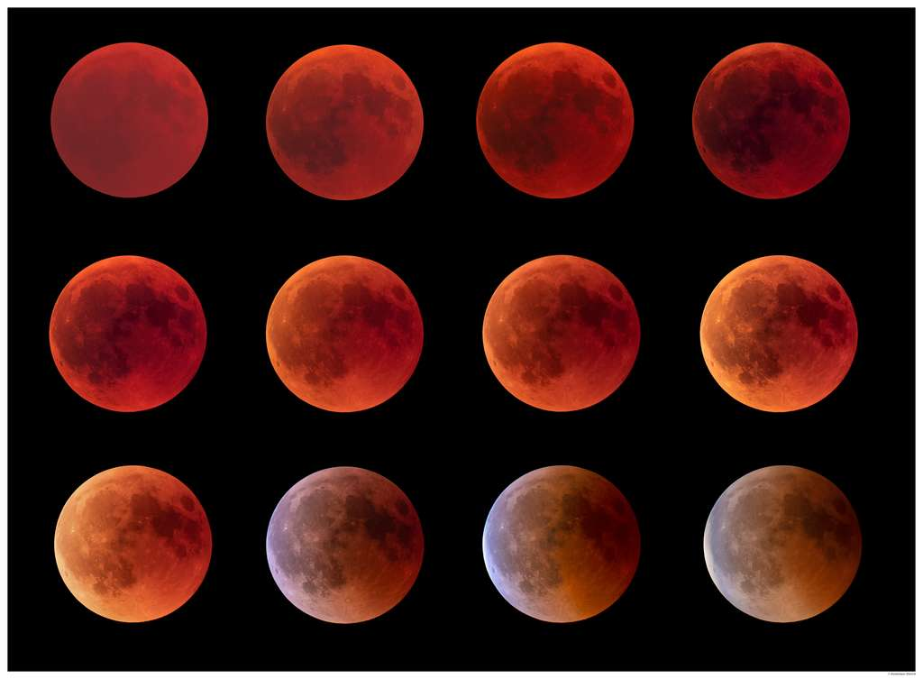 Superbe série prise durant la totalité de l'éclipse de Lune et la sortie de l'ombre de la Terre. © Dominique Dierick, Flick'r CC by-nc-nd 2.0