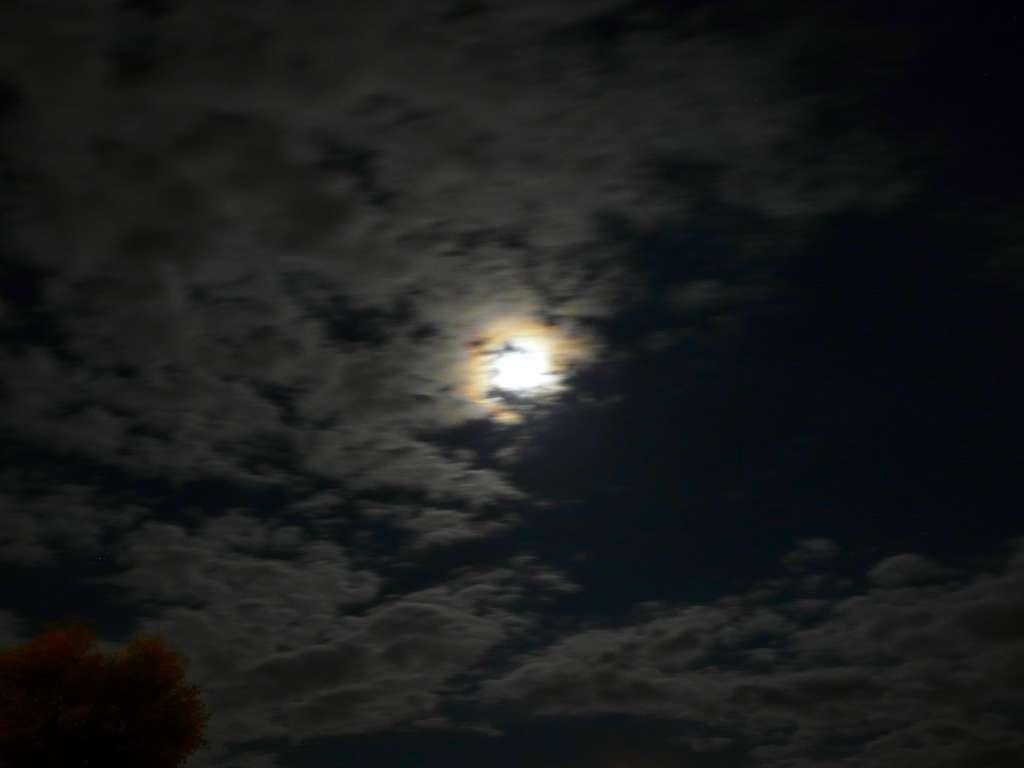 Photo d'un halo lunaire