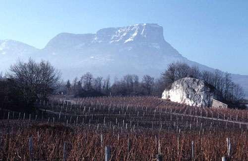 Le mont Granier (en arrière-plan), dans le massif alpin de la Chartreuse, a été le siège d'un écroulement cataclysmal en 1248 comme en témoignent les blocs cyclopéens épars des « Abîmes de Myans » (au premier plan, département de la Savoie). © J.-M. Bardintzeff