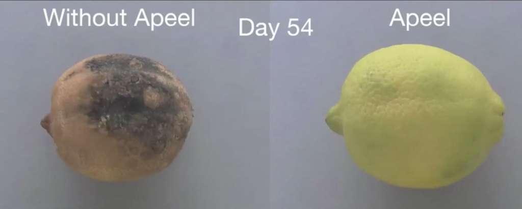 Apeel prolonge la durée de vie des fruits et légumes grâce à une pellicule naturelle comestible. © Apeel
