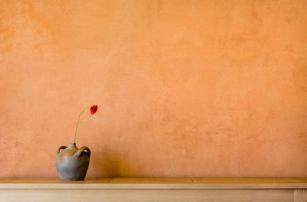 Le badigeon à la chaux offre de multiples possibilités pour personnaliser son intérieur. © Fotoschlick, Adobe Stock