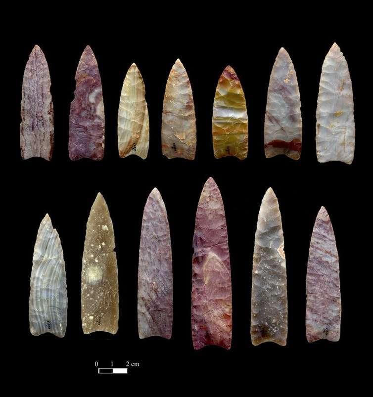 Des pointes de lance vieilles de 13.000 ans retrouvées au Colorado. © Chip Clark, Smithsonian Institution