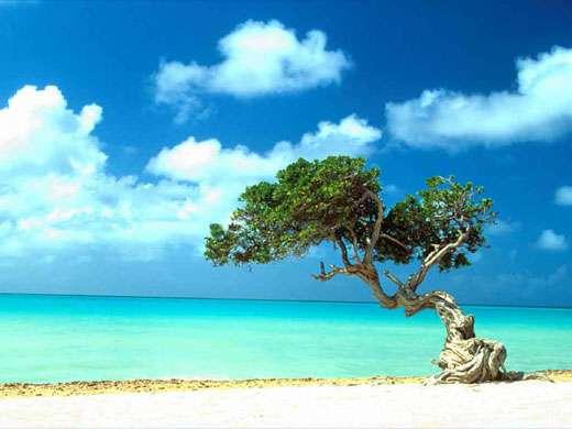 Un petit paradis...