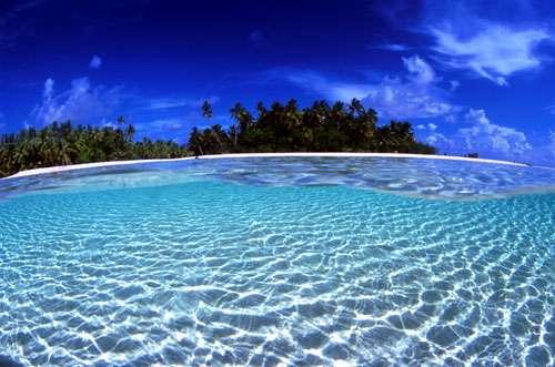 Atoll de Fakarava, dans l'archipel des Tuamotu - Réserve de la biosphère. Vue mi-air mi-eau sur un univers paradisiaque © Photographe Alexis Rosenfeld Tous droits réservés