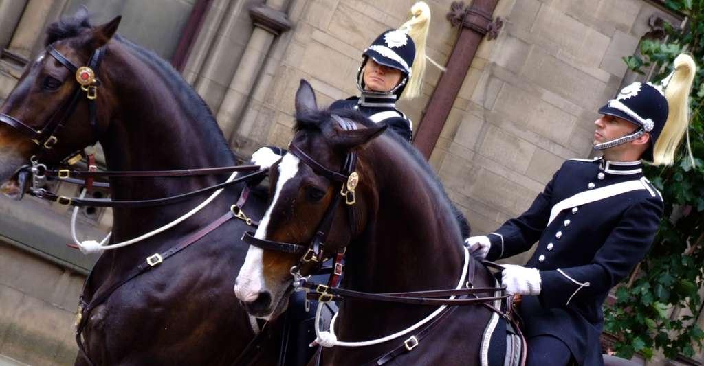 Police montée anglaise. L'uniforme a-t-il un réel impact sur les femmes ? © Edward Brownrigg, CC by 2.0