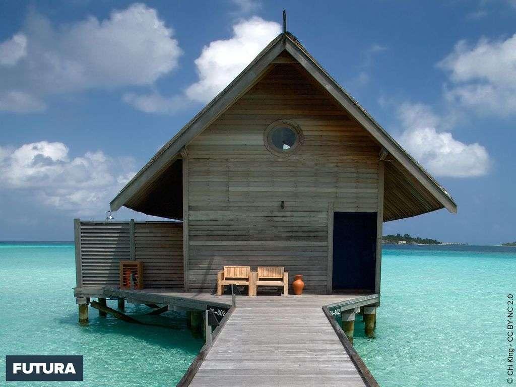 Maldives les pieds dans l'eau