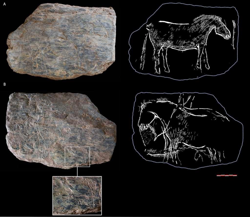 Les deux faces de la tablette du cheval. © N. Naudinot, C. Bourdier