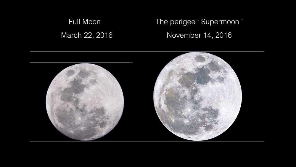 Comparaison de la micro Lune de mars 2016 avec la super Lune de novembre 2016, la plus importante depuis 68 ans. © Aun Photographer, shutterstock
