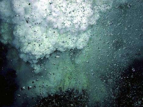 L'éruption du volcan sous-marin NW Rota-1 Il libère quantité de bulles - probablement du dioxyde de carbone (Crédits : NOAA)