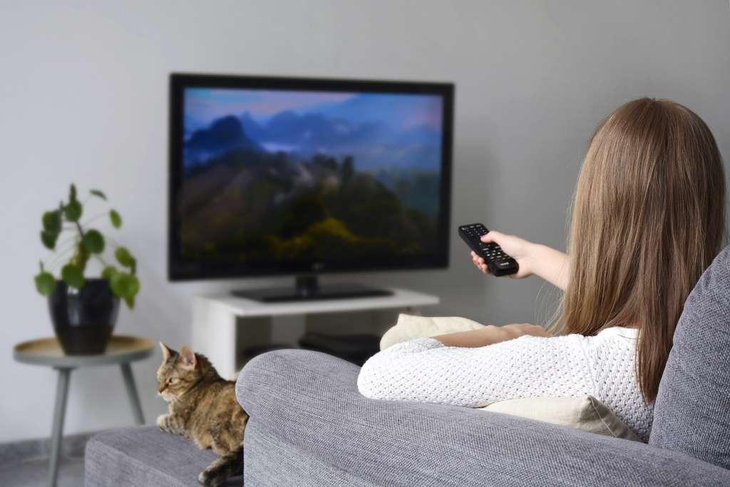 La TV 65 pouces offre une immersion totale. © Evelien, Adobe Stock
