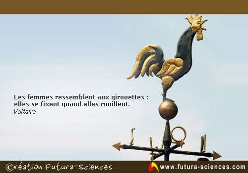 Sacré Voltaire