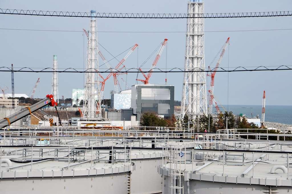 1,2 million de mètre cubes d'eau contaminée sont stockés dans des réservoirs de 1.000 m3 chacun dans la centrale de Fukushima Daiichi. © Susanna Loof, IAEA
