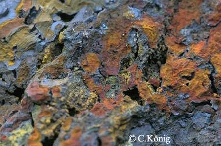 Minerai brut : goethite.