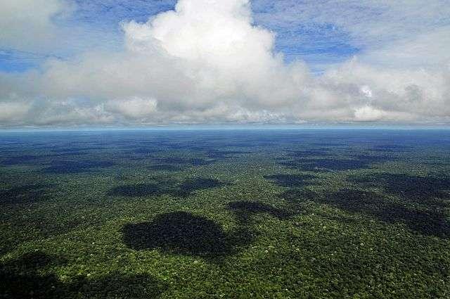 Les poussières africaines qui se déposent en Amazonie joueraient un rôle dans la prévention de l'épuisement du phosphore sur des échelles de temps de plusieurs décennies à plusieurs siècles. © Neil Palmer, CIAT, Wikimedia Commons, CC by-sa 2.0
