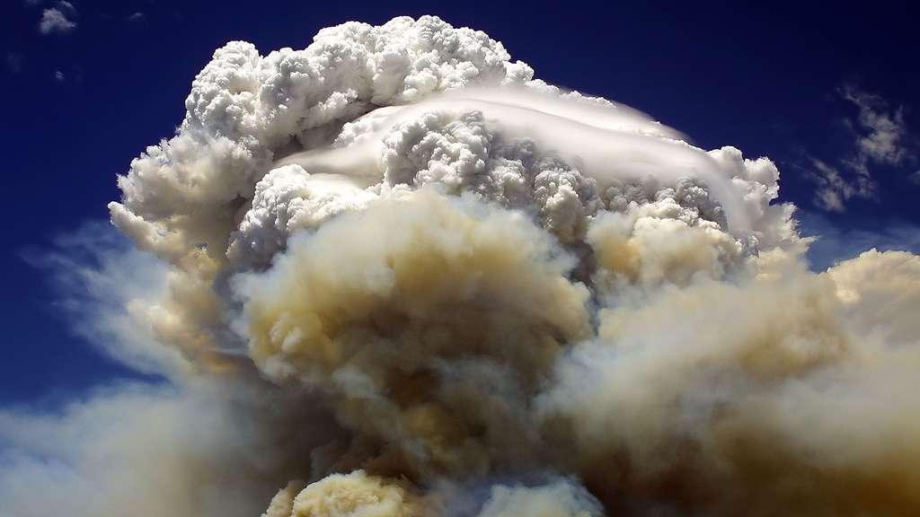 Le pyrocumulus, un nuage d'incendie