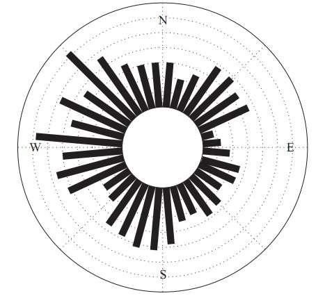 Exemple de diagramme obtenu par les chercheurs tchèques, comptabilisant les orientations des animaux par rapport au pôle nord magnétique dans les cas où la tête a pu être repérée (faute de quoi l'observation est limitée à un demi-cercle). Chaque barre représente le nombre de vaches, chaque cercle concentrique correspondant à 5 animaux. Les barres indiquent des directions différant de 10°, qui correspond donc à la résolution de la mesure. © J. Hert/L. Jelinek/L. Pekarek/A. Pavlicek
