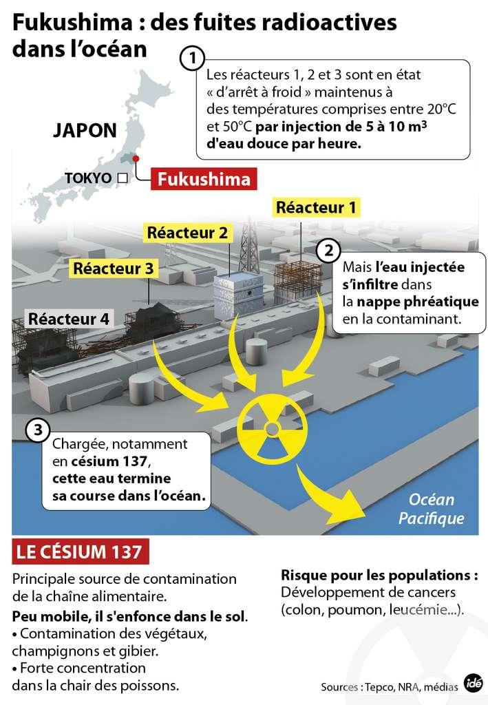 Le point en image sur la situation d'urgence déclarée à la centrale nucléaire de Fukushima-Daiichi, après l'écoulement d'eaux souterraines contaminées dans l'océan Pacifique. © Idé