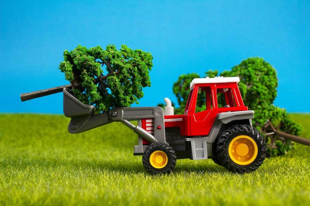Les OGM offrent un meilleur rendement à l'hectare, ce qui libère des sols pour d'autres utilisations et le stockage de carbone. © breakermaximus, Adobe Stock