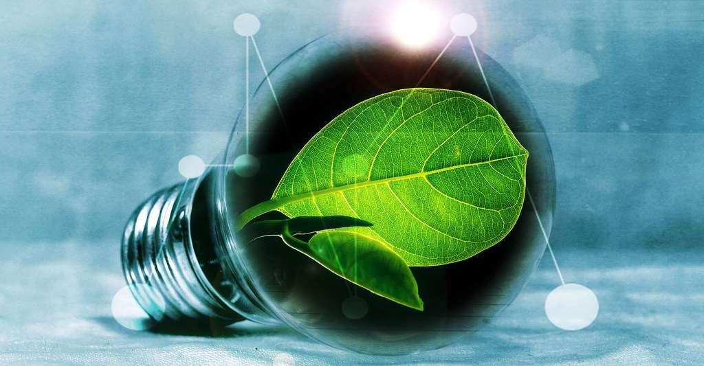 Tout savoir sur les énergies renouvelables. © PIRO4D, Pixabay, DP