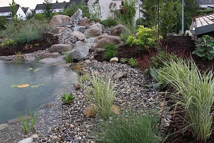 Le choix des végétaux d'une piscine naturelle ne doit pas se faire sur le seul critère esthétique. © Aquatechnobel