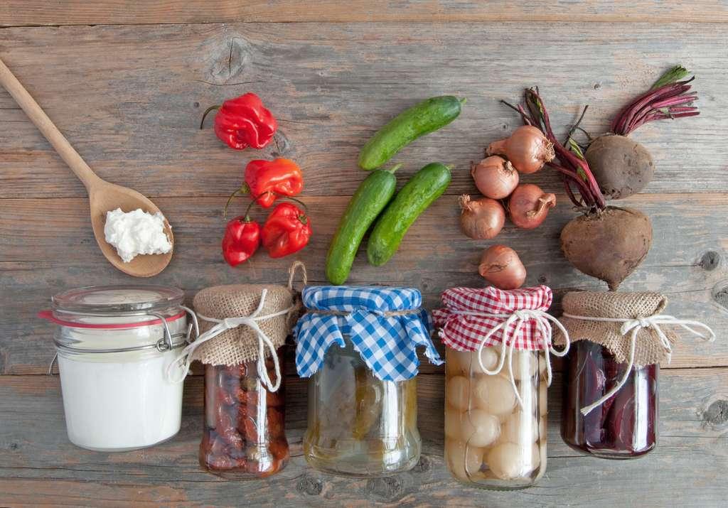 Les probiotiques, pour entretenir la flore intestinale